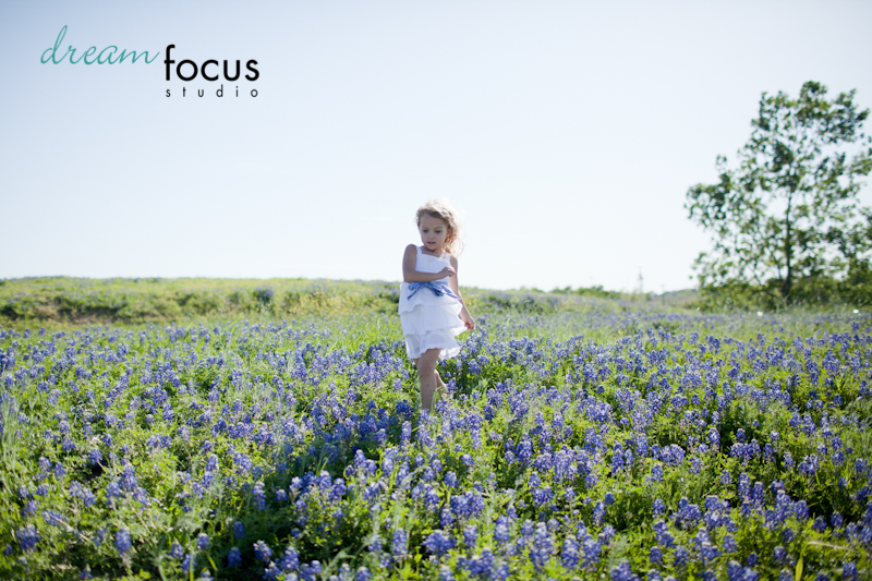 bluebonnet sessions carrollton photographer