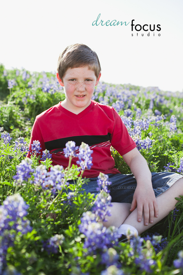 bluebonnet family photos